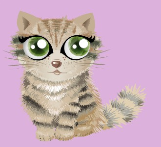 Acoger a un gato de raza shiny maine coon