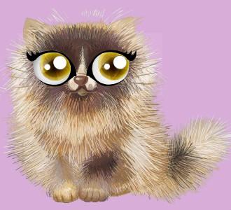 Acoger a un gato de raza shiny persa